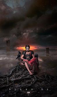 Фото Девушка индианка сидит в кресле с черепом в руках рядом с ней вороны, by Nekro