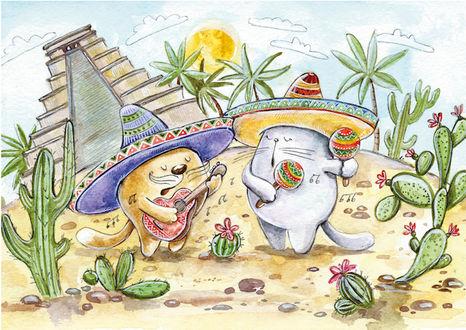 Фото Котик и кошечка среди реалий и достопримечательностей Мексики, иллюстратор Кристина Крокус