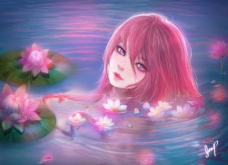 Фото Девушка с розовыми волосами лежит в воде среди лотосов, by Xhilia7 (© Arinka jini), добавлено: 22.04.2017 00:34