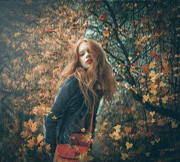 Фото Девушка с красной сумочкой стоит в осеннем лесу