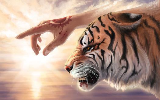 Фото Окровавленная рука и тигр, by IntoTheBear