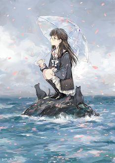 Фото Девушка сидит на камне в море, держа прозрачный зонт, рядом сидят два кота на них летят лепестки