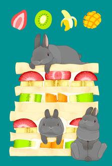 Фото Кролики на сэндвиче с ягодами и фруктами, by らいらっく