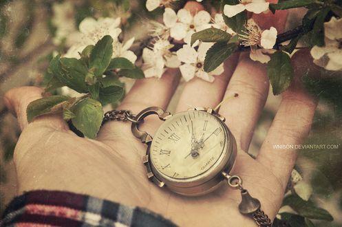 Фото На руке мужчины лежат старинные карманные часы с цепочкой рядом с цветущей веточкой, by Wnison