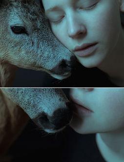 Фото Серия фото с девушкой и оленем, by laura-makabresku