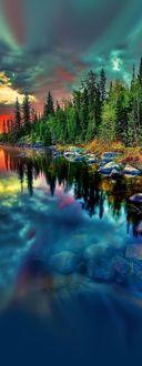 Фото Красивый пейзаж с соснами на речном берегу