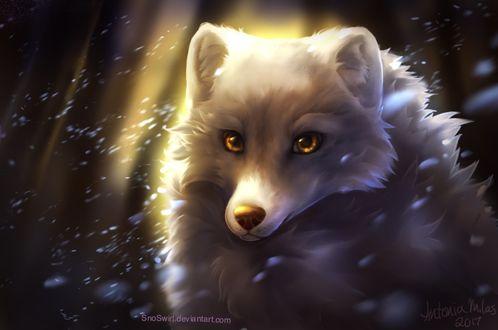 Фото Белая лиса под падающим снегом, by SnoSwirl