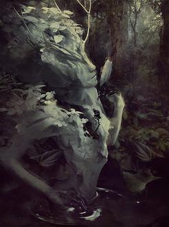Фото Девушка в образе дерева стоит в воде, by Marcela Bolivar