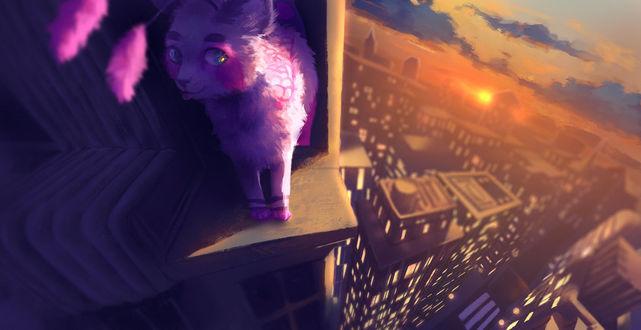 Фото Сиреневый котенок на крыше, by krooku