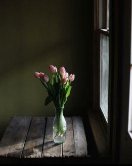 Фото Тюльпаны в бутылке на столе у окна