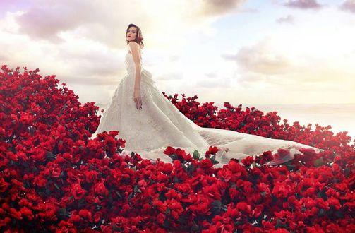Фото Девушка в свадебном платье стоит среди красных роз, by robinpika