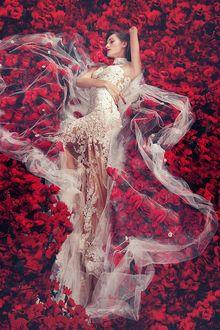Фото Девушка в свадебном платье среди красных цветов, by robinpika