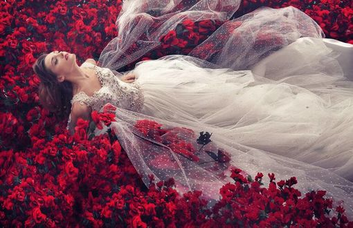 Фото Девушка в свадебном платье среди красных роз, by robinpika