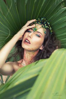 Фото Девушка с украшением на голове, by MeganCoffey