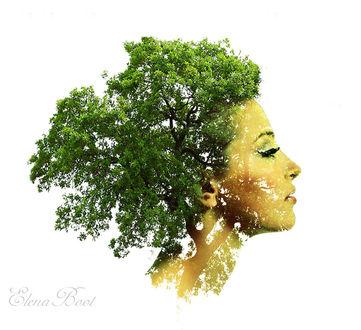 Фото Девушка с волосами из кроны дерева, by Elena Boot