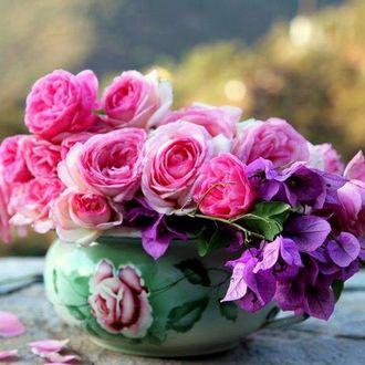 Фото Букет цветов в вазе