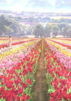 Фото Девушка в поле тюльпанов, by Kupe