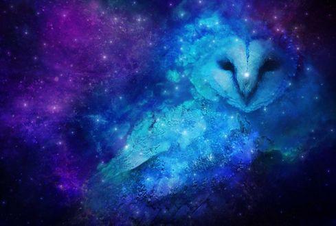 Фото Очертания совы среди космической туманности, by Starcastor