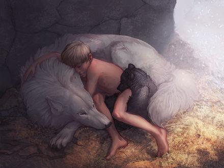 Фото Мальчик спит с волчицей и волчонком, by Sharaiza