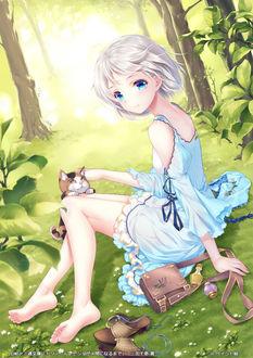 Фото Девочка с котенком сидит на траве