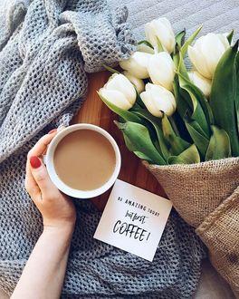 Фото Женская рука держит чашку какао, рядом лежит свитер, записка и букет белых тюльпанов