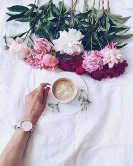 Фото Рука у чашки кофе, рядом букет разных пионов