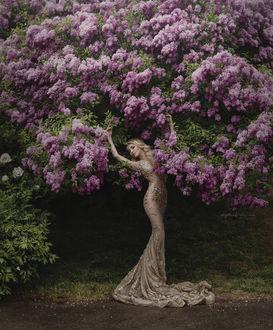 Фото Девушка стоит у куста сирени, фотограф Ирина Джуль