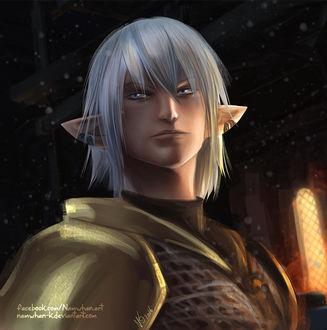Фото Белокурый эльф из игры Final Fantasy, by Namwhan-K