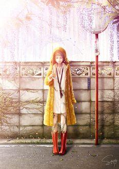 Фото Девушка с зонтом стоит под цветущей глицинией, by Bouno Satoshi