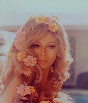Фото Американская певица Nancy Sandra Sinatra / Нэнси Сандра Синатра