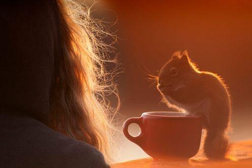 Фото Девушка в капюшоне к нам спиной, рядом с ней на чашке сидит белка