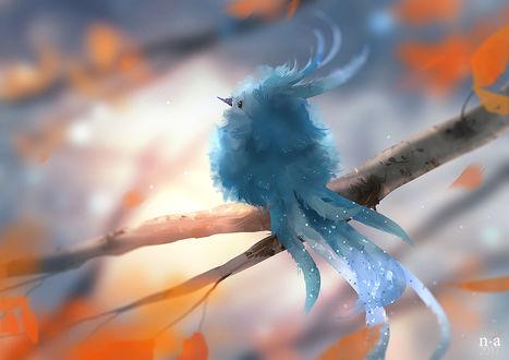 Фото Голубая птичка сидит на ветке дерева, by Mohn Blume