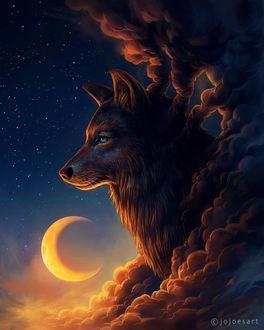 Фото Волк среди облаков в ночном небе, by JoJoesArt