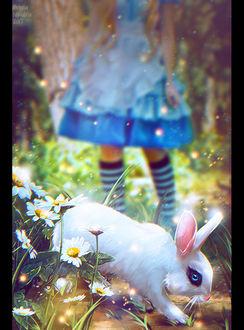 Фото Alice / Алиса персонаж сказки Alices Adventures in Wonderland / Алиса в Стране Чудес и белый кролик, by Nikulina-Helena