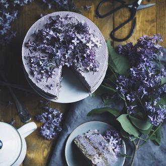 Фото Десерт посыпан цветочками сирени (© zmeiy), добавлено: 25.05.2017 12:45