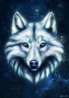 Фото Космический белый волк на фоне космоса, by KhaliaArt