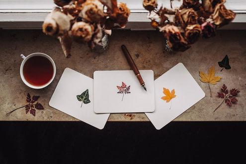 Фото Чашка чая, два букета засохших роз, листья, ручка и карточки с нарисованными листьями на окне, by Rona-Keller
