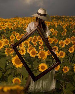 Фото Девушка в шляпе стоит в поле подсолнухов с картиной в руках с изображением цветов