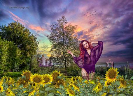 Фото Девушка стоит около подсолнухов на фоне леса и замка
