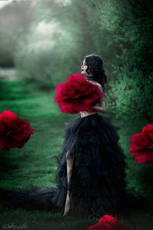 Фото Девушка с бордовыми розами, фотограф Нуруллаева Яночка