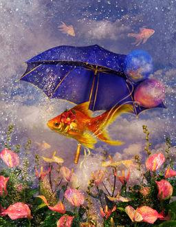 Фото Рыбка с зонтом, by Poglazovs