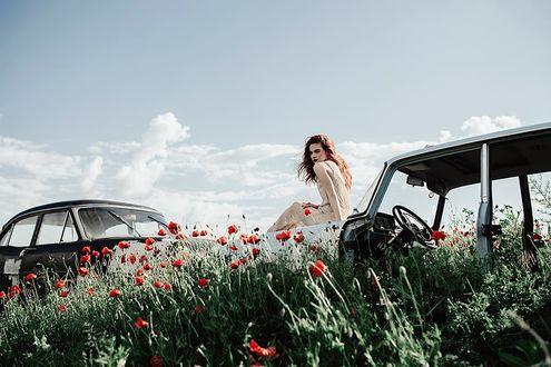 Фото Девушка сидит на авто в поле с маками, фотограф Jovana Rikalo