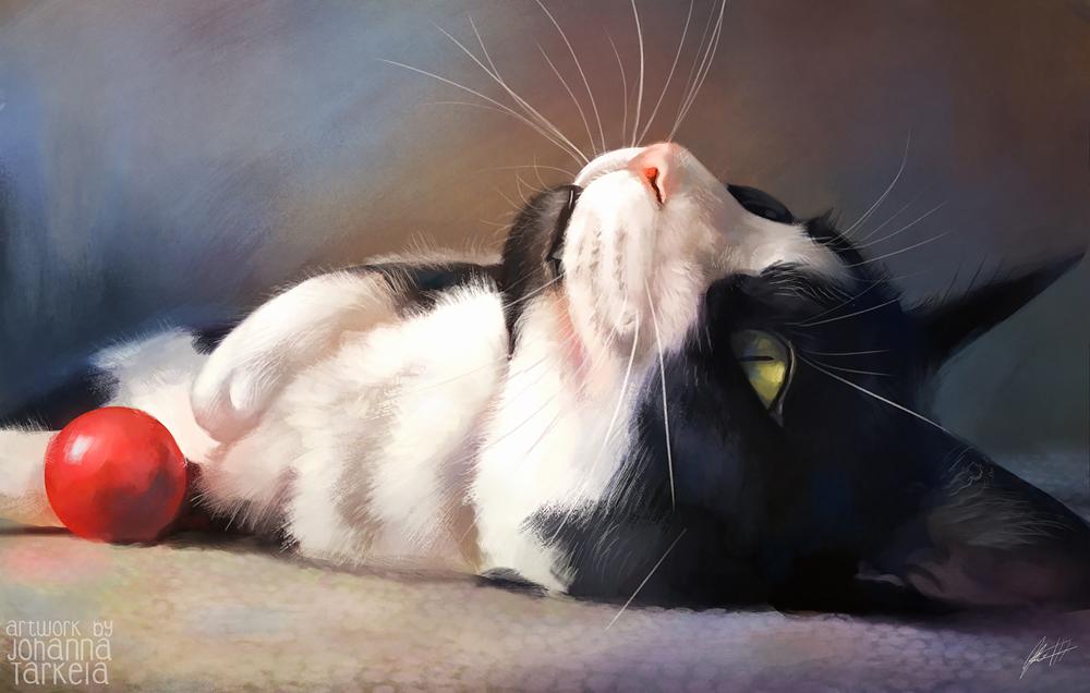 Фото Кошка смотрит вверх, by Lhuin