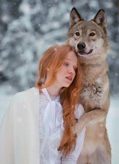 Фото Рыжеволосая девушка с волком под падающим снегом