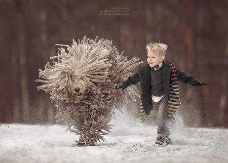 Фото Мальчик бежит с комондором по снегу, фотограф Андрей Селиверстов