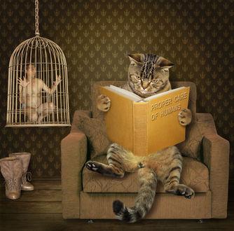 Фото Где-то в параллельной вселенной испуганный мужчина сидит в клетке, висящей рядом с креслом, на котором сидит кот и читает книгу Proper care of humans / Правильный уход за людьми, фотограф Ирина Кузнецова