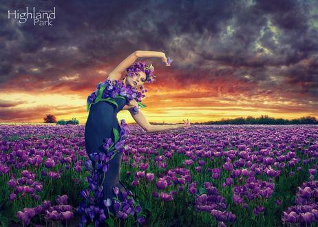 Фото Девушка в синем платье с цветами на ней стоит на поле фиолетовых тюльпанов, фотограф Jeff McNeill