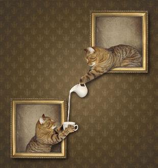 Фото Кошка из картины наливает из молочника молоко другой кошке, фотограф Ирина Кузнецова