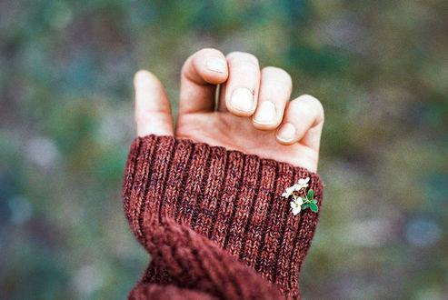 Фото На рукаве девушки маленький весенний цветочек, by Rona-Keller