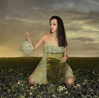Фото Время зеленого чая, фотограф Ирина Кузнецова